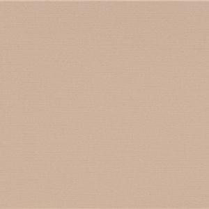 TAPET PVC NEO CLASSICISM 195502 53X1000 (5.3 mp/rola)