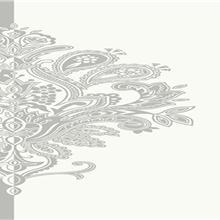 TAPET PVC TWO TONE NW9192 53X1000 (5.3mp/rola)